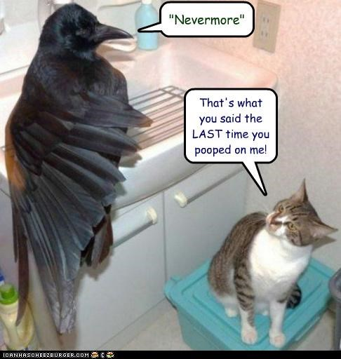 """Nevermore"" That's what you said the LAST time you pooped on me!"
