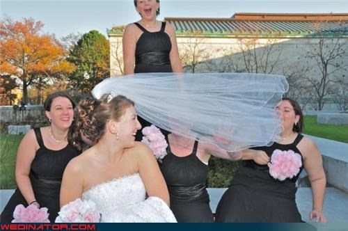 bride,bridesmaids,funny wedding photos,veil