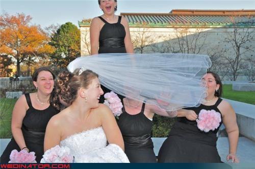 bride bridesmaids funny wedding photos veil - 4559326464