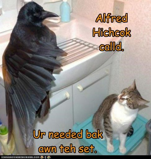 alfred hitchcock,back,called,caption,captioned,cat,crow,Movie,needed,set,the birds,title