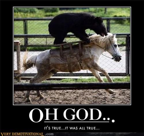 bear,cavalry,horse