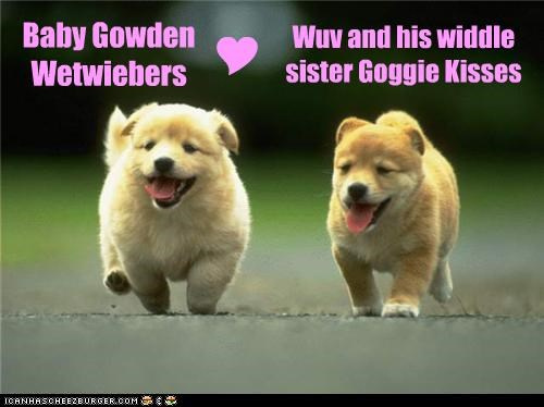 Baby Gowden Wetwiebers Wuv and his widdle sister Goggie Kisses Y