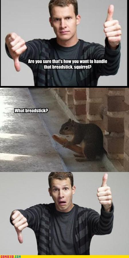 animals nom nom nom phallic squirrel tosh - 4561233920