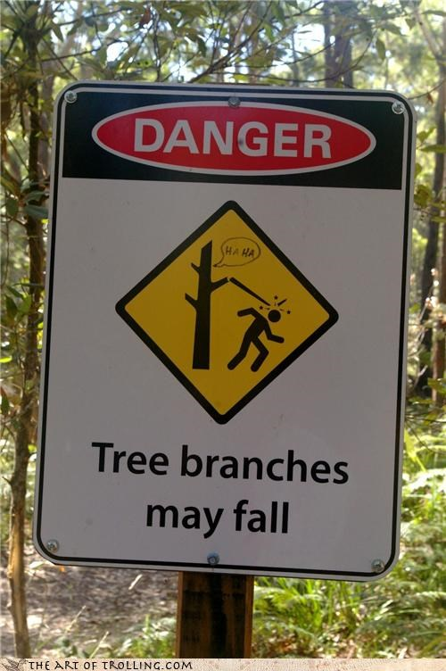 danger fall hiker IRL lol problem tree - 4562130688