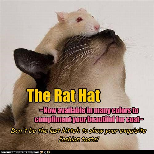 The Rat Hat ~Now available in many colors to compliment your beautiful fur coat~ Don't be the last kitteh to show your exquisite fashion taste!