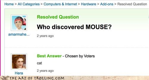 cat computers dogs mouse what Yahoo Answer Fails - 4562635776