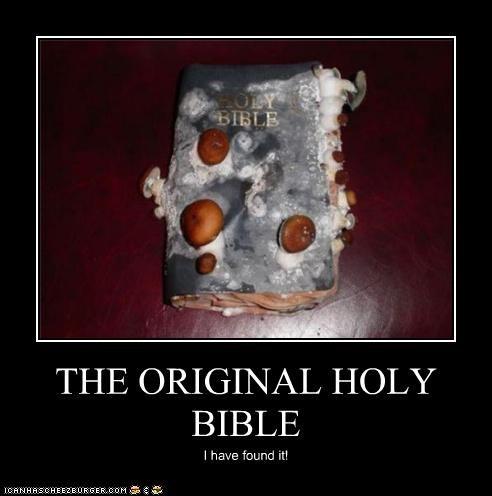 THE ORIGINAL HOLY BIBLE