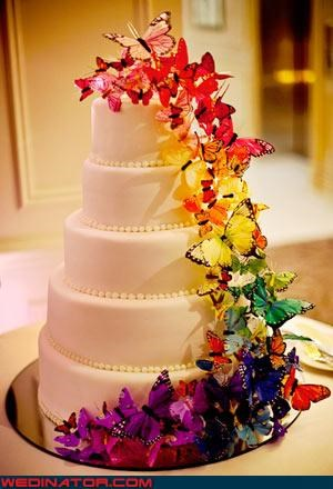 butterflies,funny wedding photos,rainbow,wedding cake