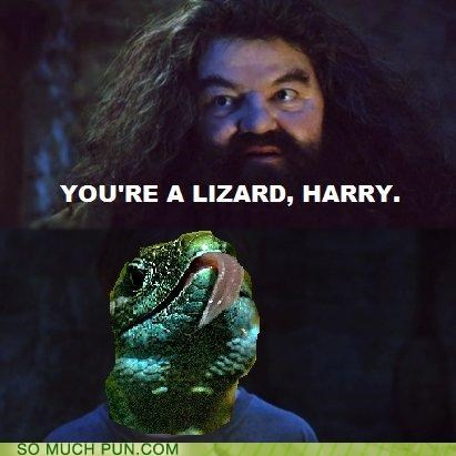 famous,Hagrid,Harry Potter,lizard,parseltongue,quote,rhyme,slytherin,wizard