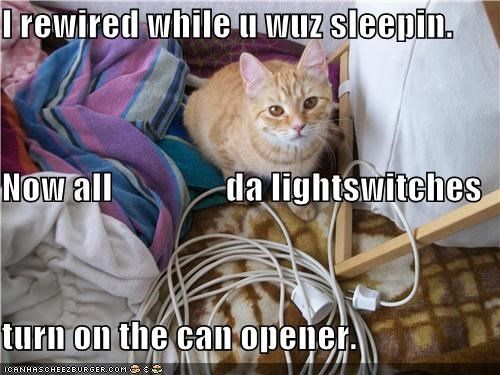 I rewired while u wuz sleepin. Now all                da lightswitches turn on the can opener.