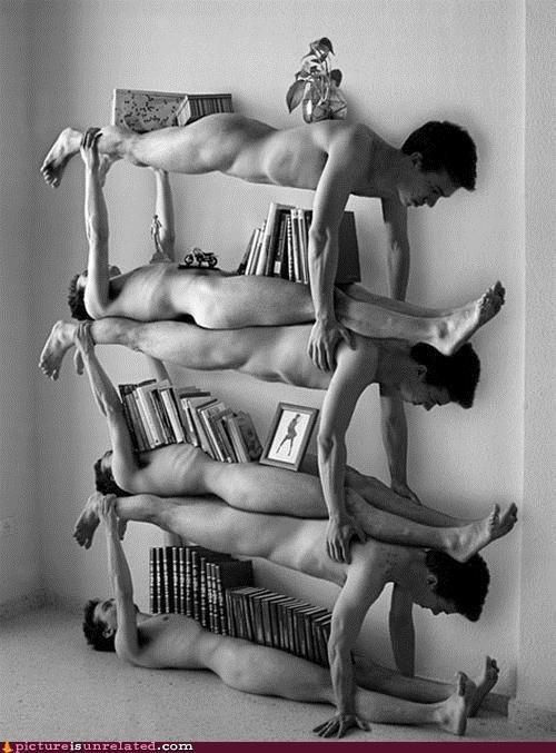 art au natural dudes bookshelf twilight jokes wtf - 4566089216