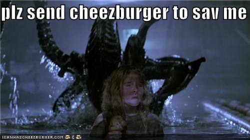 Cheezburger Image 4566752256