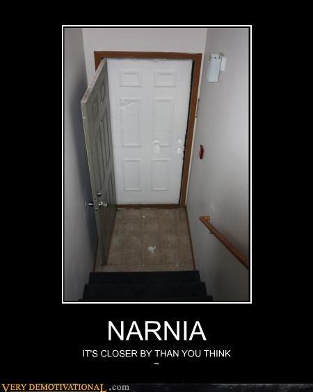 narina snow door awesome - 4567489792