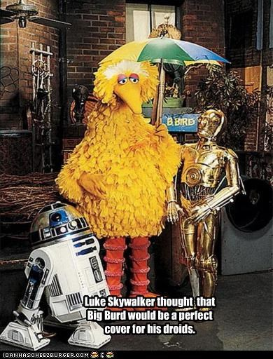 Luke Skywalker thought that Big Burd would be a perfect cover for his droids.