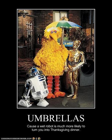 UMBRELLAS Cause a wet robot is much more likely to turn you into Thanksgiving dinner.