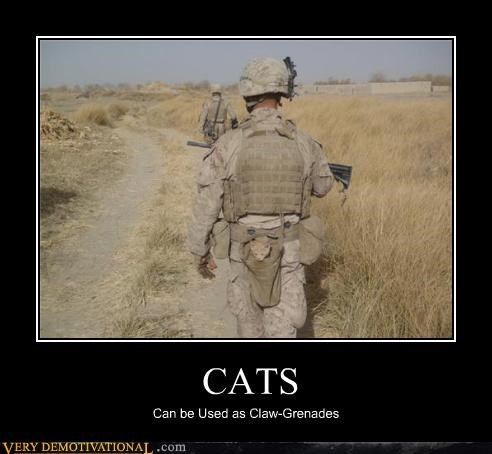 Cats,army,claw,grenade,good idea