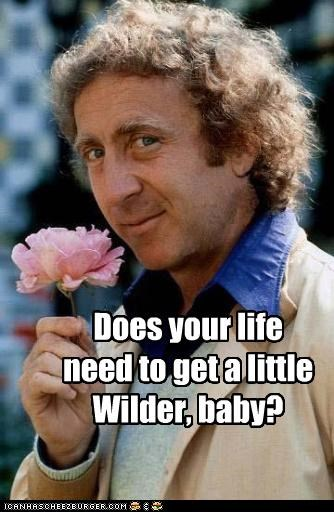 actor celeb funny gene wilder Hall of Fame - 4569455360