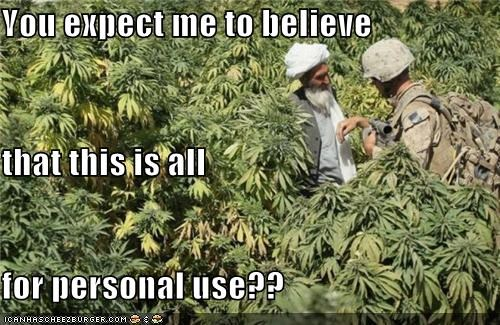drugs marijuana personal use soldiers