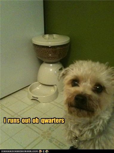 dispenser nom noms out quarters running out Sad whatbreed