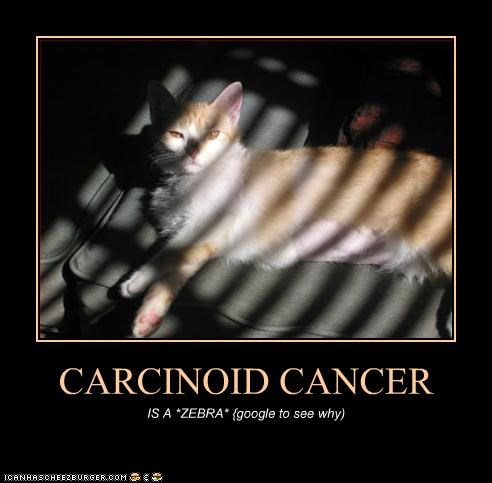 CARCINOID CANCER IS A *ZEBRA* {google to see why)