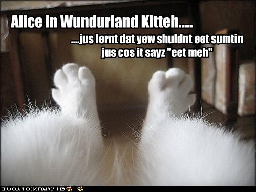 alice in wonderland,caption,captioned,cat,confused,eat,eat me,label,learned,lewis carol,shouldnt