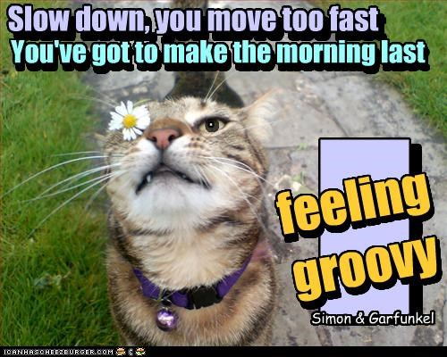 n . Slow down, you move too fast You've got to make the morning last feeling groovy Slow down, you move too fast You've got to make the morning last gg Simon & Garfunkel feeling groovy gg