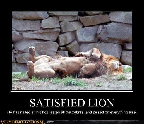 lion,satisfied,oh yeah