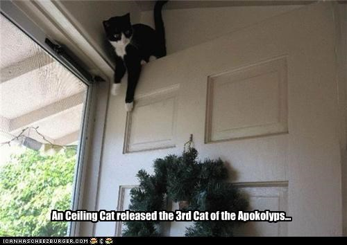 An Ceiling Cat released the 3rd Cat of the Apokolyps...