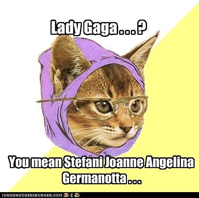 Hipster Kitty,lady gaga