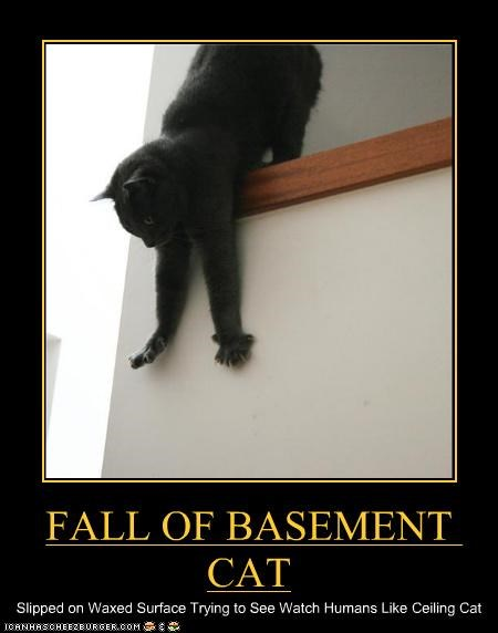 FALL OF BASEMENT CAT Slipped on Waxed Surface Trying to See Watch Humans Like Ceiling Cat