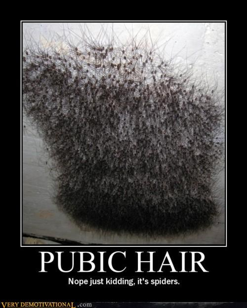 eww Hall of Fame pubic hair spiders - 4572278784