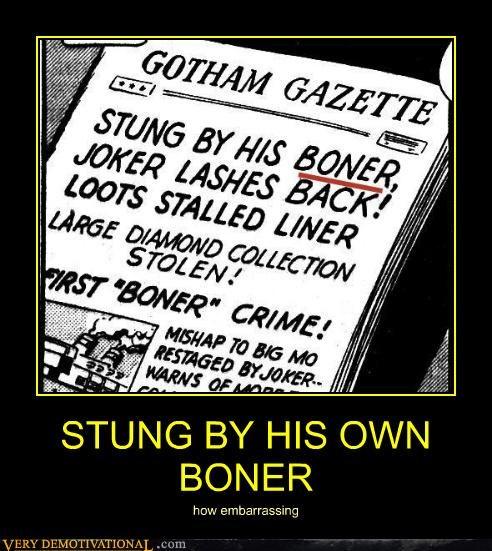 boner,gotham gazette,stung,wtf