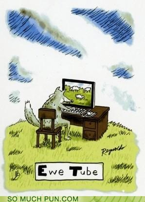 computer,ewe,literalism,tub,Video,you,youtube