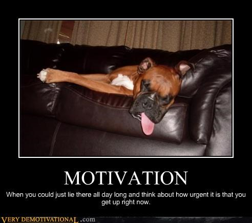 MOTIVATION When you could just lie there all day long and think about how urgent it is that you get up right now.