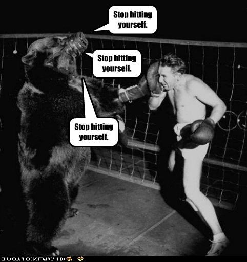animal bear funny Photo sports - 4575181056