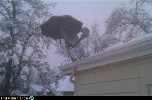 home repair package satellite dish wtf - 4575343104