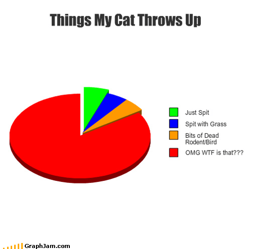 ayoo,cat,dynamite,food,meow,pets,Pie Chart,taio cruz,throw up,vomit
