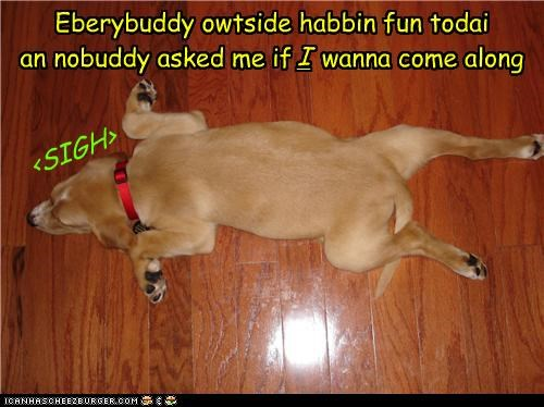 <SIGH> Eberybuddy owtside habbin fun todai an nobuddy asked me if wanna come along I
