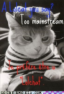 cat,chat,french,hipster,lolcats,mainstream