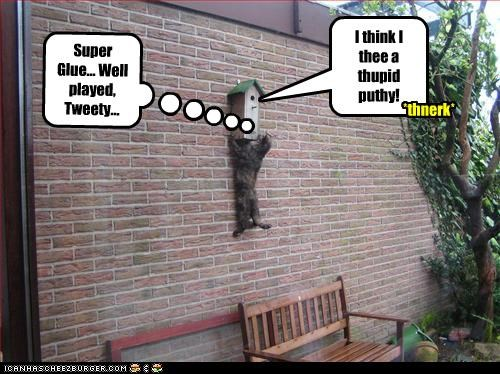 Super Glue... Well played, Tweety... I think I thee a thupid puthy! *thnerk*