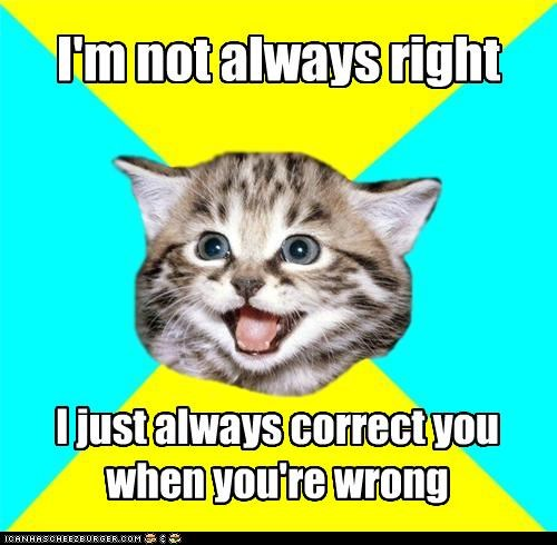 Happy Kitten not always right youre-wrong