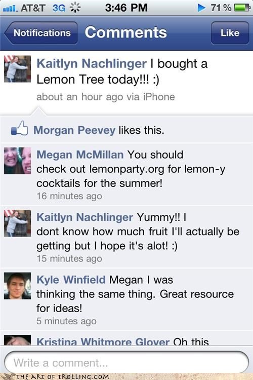 cocktails facebook lemons Party tree
