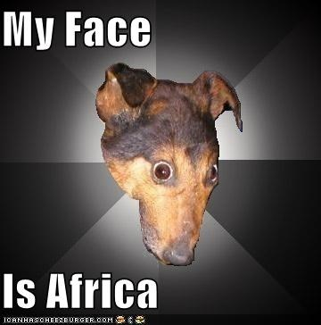 My Face Is Africa