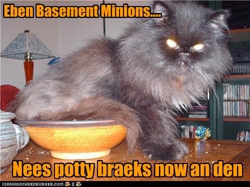 Eben Basement Minions.... Nees potty braeks now an den