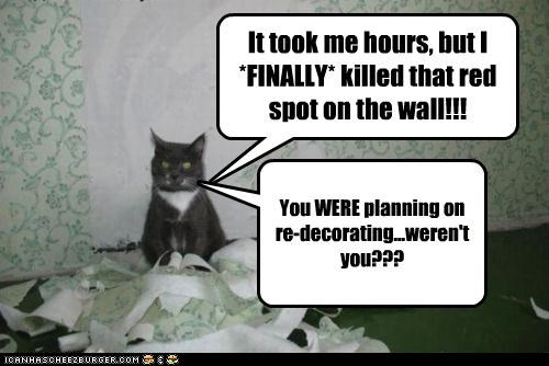 asking,caption,captioned,cat,finally,hours,killed,question,red spot,redecorating,success,took,verifying,victory,wall