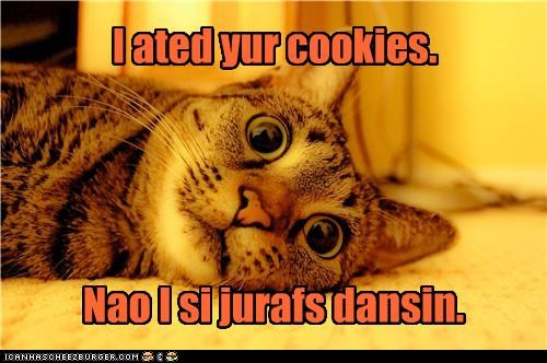 after ate caption captioned cat cookies crazy dancing drugs effects giraffes Hall of Fame high now - 4580171520