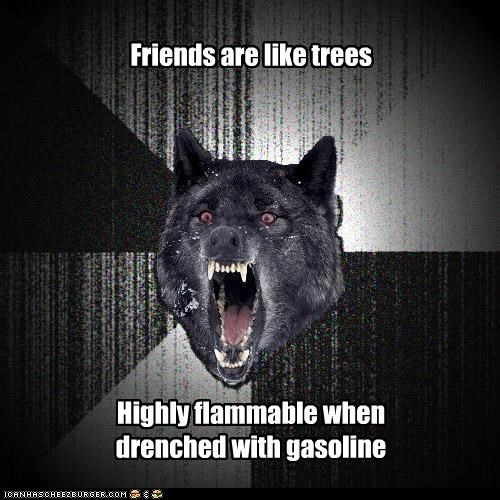 flammable,gasoline,Insanity Wolf,trees,wood