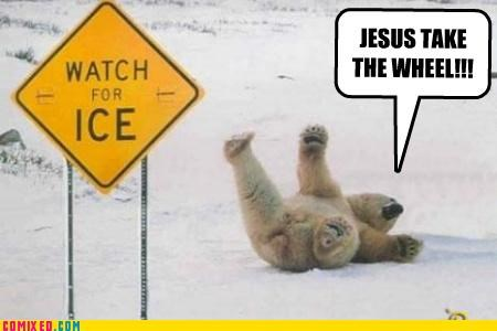 jesus,polar bear,sliding