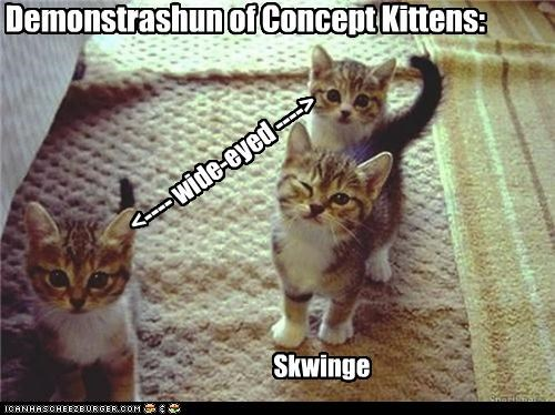 Demonstrashun of Concept Kittens: <---- wide-eyed ----> Skwinge