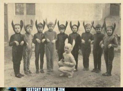 groups multiple bunnies - 4581131520